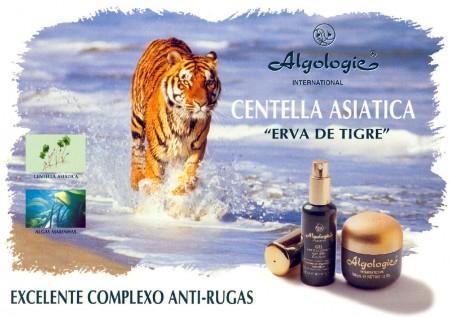 GRAFICA |  Publicidad | ALGOLOGIE > Publicidad Lugar de Venta